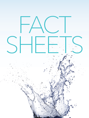 Description: PFAS Fact Sheet
